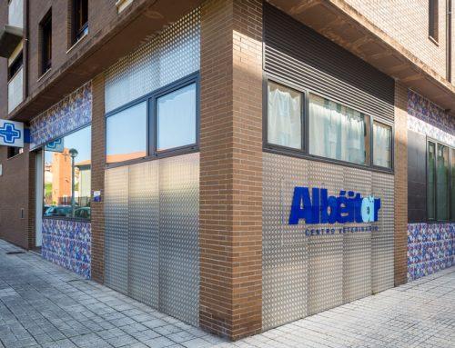 Adecuación de local comercial para clínica veterinaria en Gijón